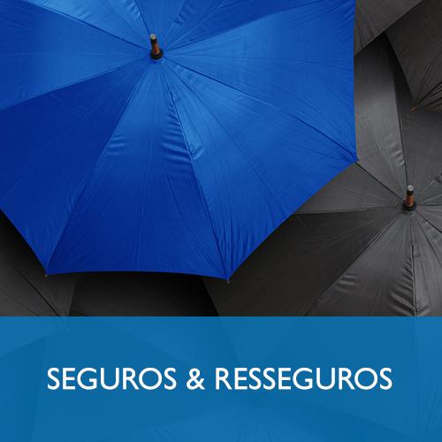 SEGUROS E RESSEGUROS