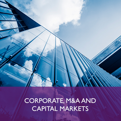 CORPORATE, MERGERS AND ACQUISITIONS AND CAPITAL MARKETS